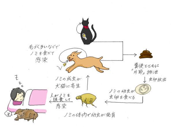 コラム-渡辺動物病院(静岡県島田...
